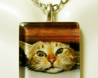 In a tight spot cat pendant and chain - CGP01-063