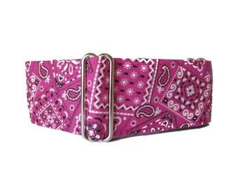 Hot Pink Martingale Dog Collar, 2 inch Martingale Collar, Pink Dog Collar, Bandana Dog Collar, Raspberry, Fuchsia, Pink Greyhound Collar