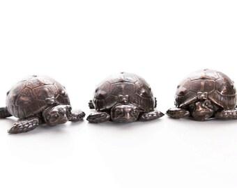 Three tortoise hatchlings. Open edition bronze.