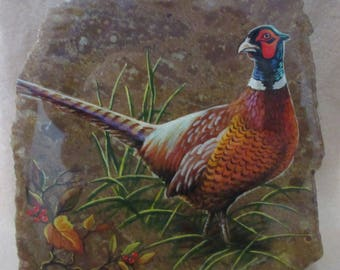 Pheasant On Bird's Eye Rhyolite