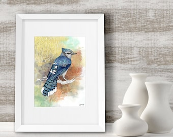Blue Jay art print, Home decor wall art, Bird gift ideas, Framed nature print