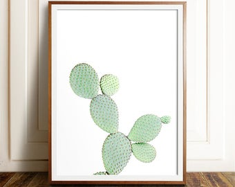 Cactus Art, PRINTABLE Cacti Print, Cactus Poster, Cactus Photography, Cactus Wall Art, Cactus Print, Botanical Print, Cactus Decor,Green Art