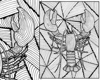 lobster adult coloring page, adult coloring sheet, colouring sheet pdf, adult colouring, printable coloring, digital coloring page, flowers