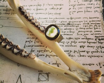 Real Human Tooth Ring