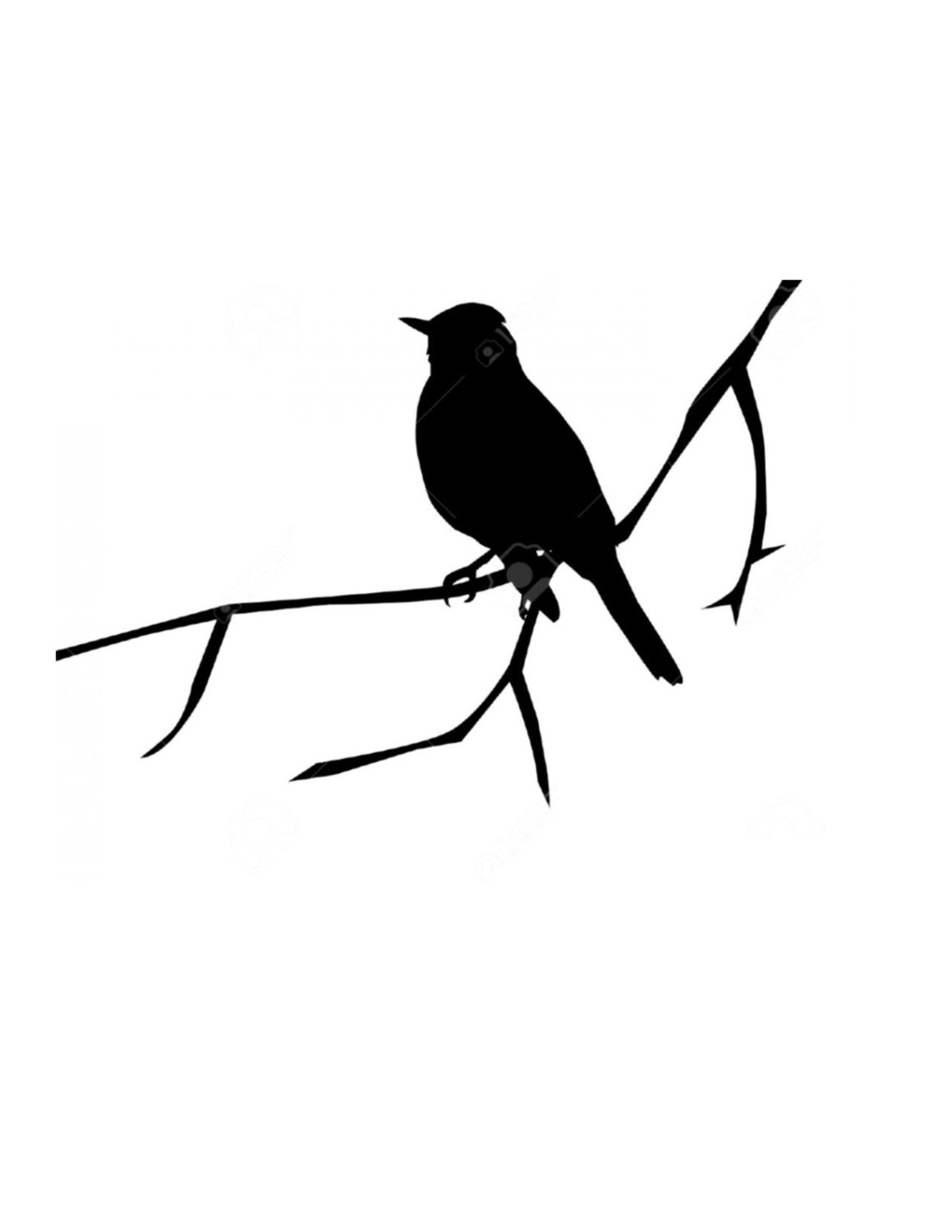 Bird On Branch Stencil Made From 4 Ply Mat Board Choose A