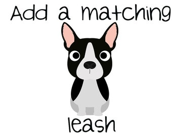 Matching Leash for all collars