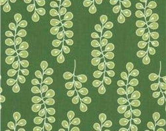GOING COASTAL by Emily Herrick ~ Fabric ~ Sea Kelp in Green ~ Michael Miller ~ Nautical ~ Quilting ~ Sewing ~ Ocean ~ Home Decor