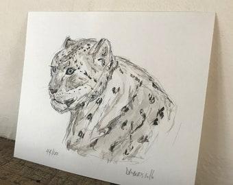 100 Animals, 100 Days: 44/100 The Snow Leopard