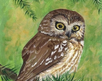 Cute Owl 8 x 10 reproduction