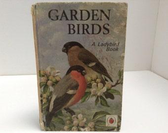 Garden Birds Ladybird easy reading book vintage  nature childrens illustrations