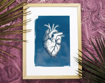 Heart Anatomy Vintage Illustration, Cyanotype on Watercolor Paper, Medical Art, Anatomical Heart, Love Gift, Gift for Her (Limited Edition)
