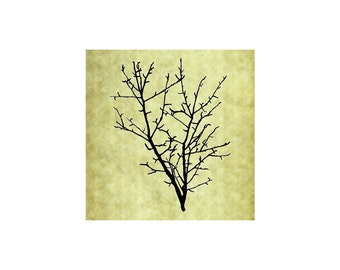 BARE BRANCH Rubber Stamp~Large Cling Stamp~Winter Branch~Rustic Wedding~Branches~Fall~Christmas~Holiday~Thanksgiving~Autumn~Forest (53-14)