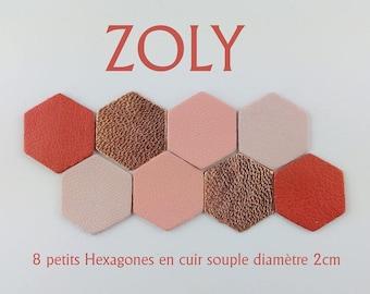 8 small hexagons diameter 2cm 4 colors