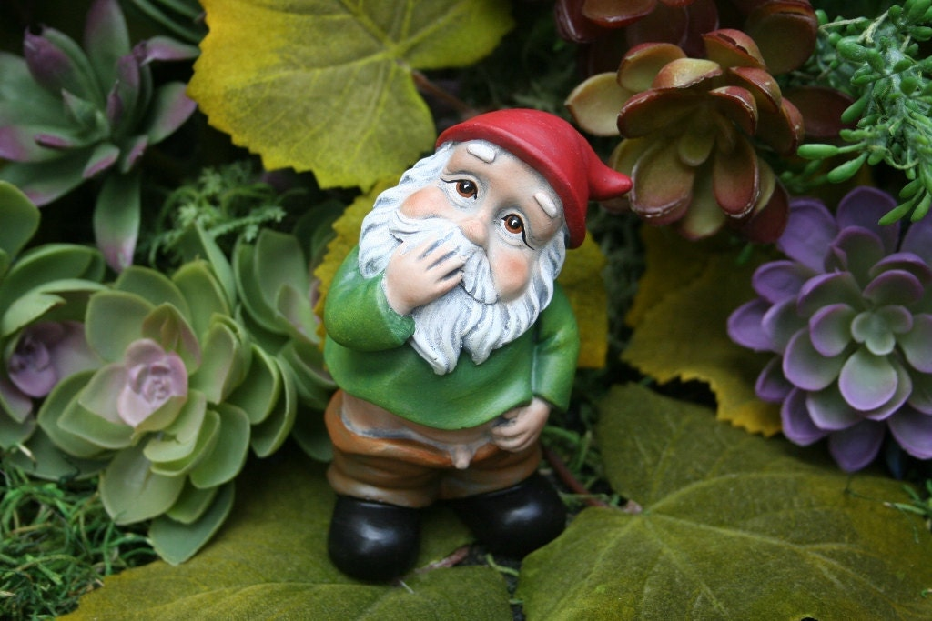 Funny Gnomes: Funny Gnome Caught With His Pants Down Wee Willie