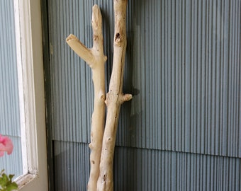 Set of 2 Knobby Unique Driftwood Branches for Beach Art and Bohemian Crafts BA2