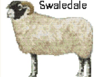 CROSS STITCH KIT- Swaledale sheep 17cm x 15 cm