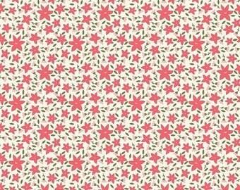 EXTRA 20 30% OFF  Carina Gardner Posy Garden Cream Floral