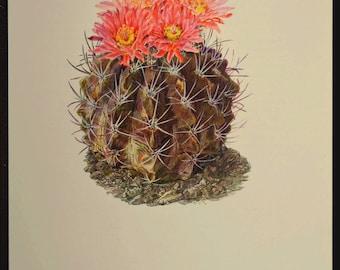 Cactus Print Cacti Print Nature Print Art Botanical Print