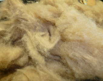 Camel Wool Dehaired 16 Micron Washed 2 Ounces