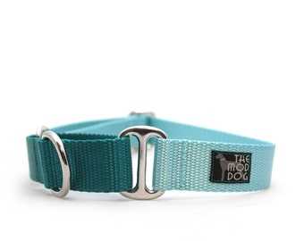 """1"""" Cullen buckle or martingale dog collar"""
