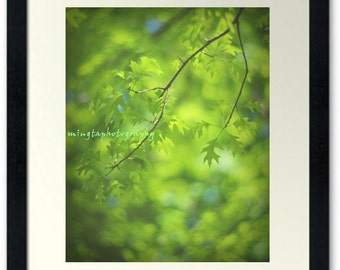 Reading Under The Old Oak Tree - Old Oak Tree Sun Catcher nature beauty Spring art Reading Nature art Be green Fine Art Print 8x10