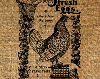 Strickly Fresh Eggs Chicken Hen Farming Egg Farm Vintage Sign Digital Image Download Transfers To Pillows Totes Tea Towels Burlap No. 2558