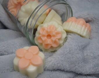 Peach & Melon scented wax melt to burn fragrance