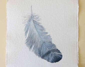 Original watercolour illustration painting blue grey feather study feather art