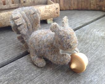 Brown Squirrel Buddy