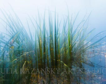 Instant digital download Green Explosion Fine art abstract photography Grass in lake nature photography ICM photo Printable photography