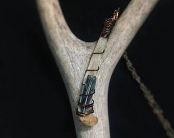Squirrel Fibula & Kyanite Wire Wrap