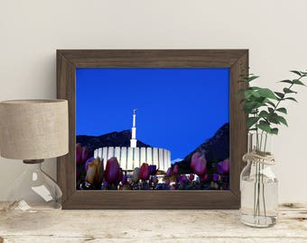 Provo Temple at Night // LDS Temples // You get 5 sizes // Instant Digital Download