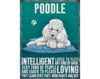 White Poodle Metal Sign