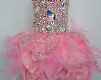 Dog Dress, Pink Swarovski Crystal Covered Feather Dress, Couture - Featured at Oscars 2015