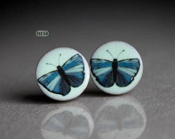 Butterfly - round ceramic earrings, ceramic studs
