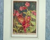 Red Campion Flower Fairy ...
