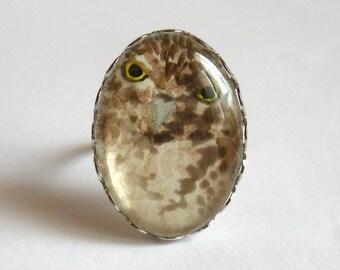 Owl Ring Original Watercolor
