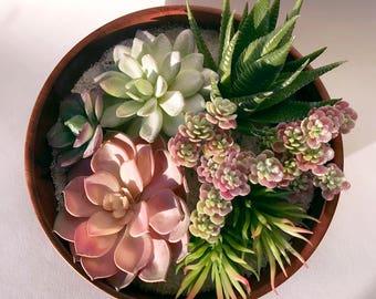 Dena Wooden Bowl Succulent Terrarium