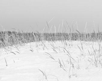 Black and White Beach Photography, Coastal Wall Art, Sand Dune Photo with Beach Grass, Beach Art, Seashore Decor, Beachy Dune Grass Picture