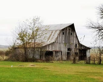 Missouri Barn with Cow Folded Note Card and Envelope