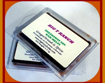 Gingerbread & Spice - Breakaway Melts -  Autumn Tarts- Highly Scented - Free U.S. Shipping