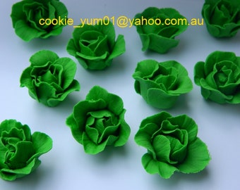 12 edible 3D LETTUCE VEGETABLE peter Rabbit theme harvest farm garden cake cupcake wedding topper decoration wedding birthday engagement
