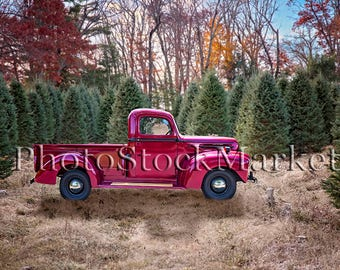 Christmas Tree Farm Vintage Ford Truck Red Holiday Backdrop Photography