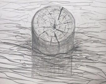 Treibholz, Graphit-Zeichnung
