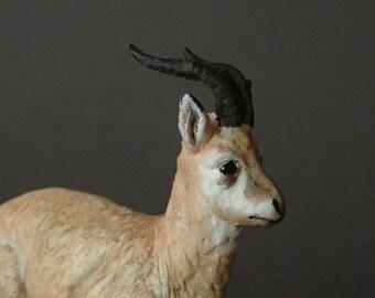 Male przewalskii gazelle figure (pseudois nayaur) 1:20 scale/resine/hand painted/collector