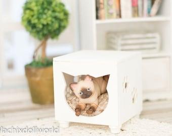 Needle felted cat, BJD 5cm cat, cat tree, miniature cat hideout, cat accessories bjdcat elleocat evethecat , diorama accessories, dollhouse