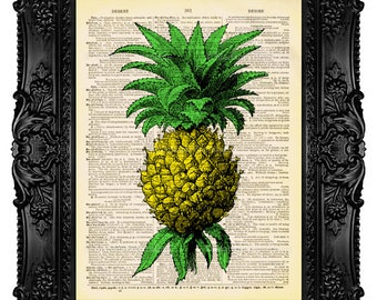 Fruit and Vegetable Prints Pineapple Print Pineapple Home Decor Wall Art Tropical Fruit Poster Pineaple Art Print Dictionary Art Print 466