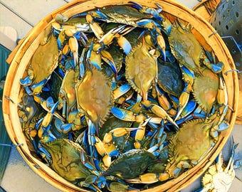 Blue Crab Basket on the Chesapeake