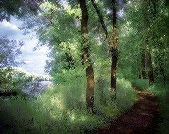 Nature Photography, River Trail Print, Pathway, Dreamy Art, Peaceful, Surreal Decor, Woodland Forest Photo, Summer, Trees -  Riverwalk