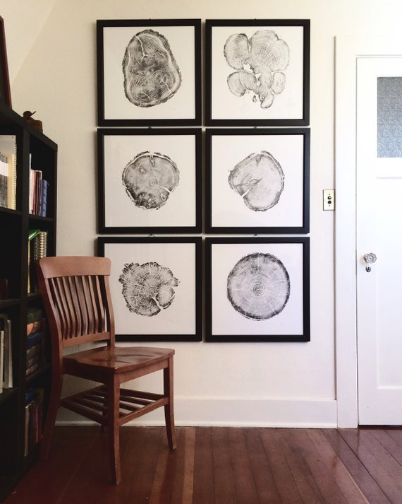 Large wall art set framed set of 6 tree ring prints real